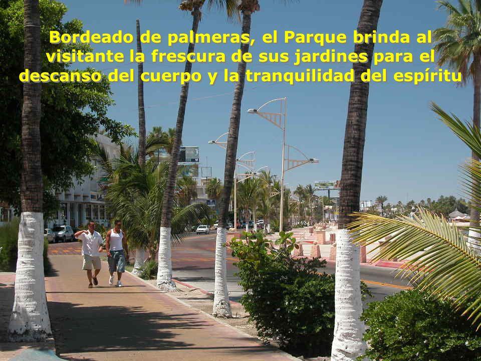 Bordeado de palmeras, el Parque brinda al visitante la frescura de sus jardines para el descanso del cuerpo y la tranquilidad del espíritu