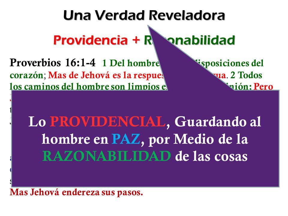 Providencia + Razonabilidad