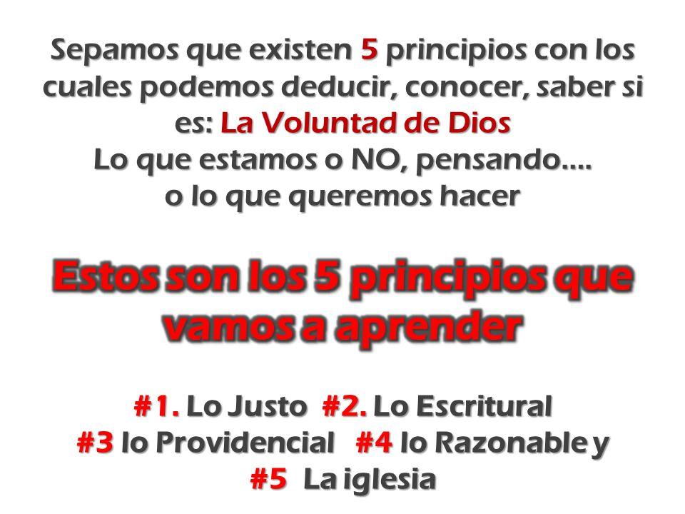 Estos son los 5 principios que vamos a aprender
