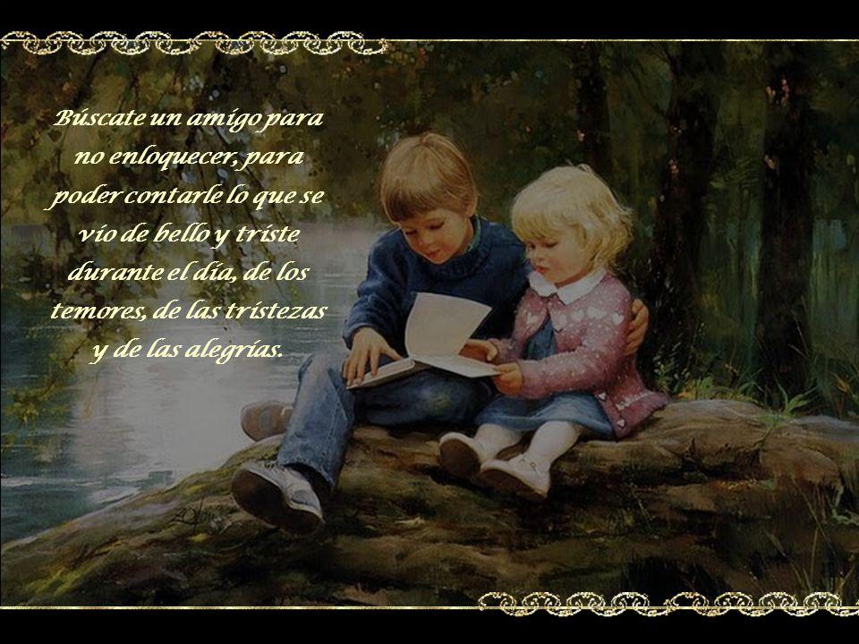 Búscate un amigo para no enloquecer, para poder contarle lo que se vio de bello y triste durante el día, de los temores, de las tristezas y de las alegrías.