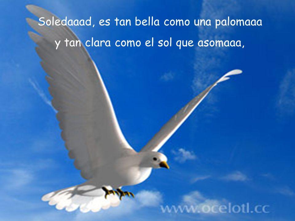 Soledaaad, es tan bella como una palomaaa