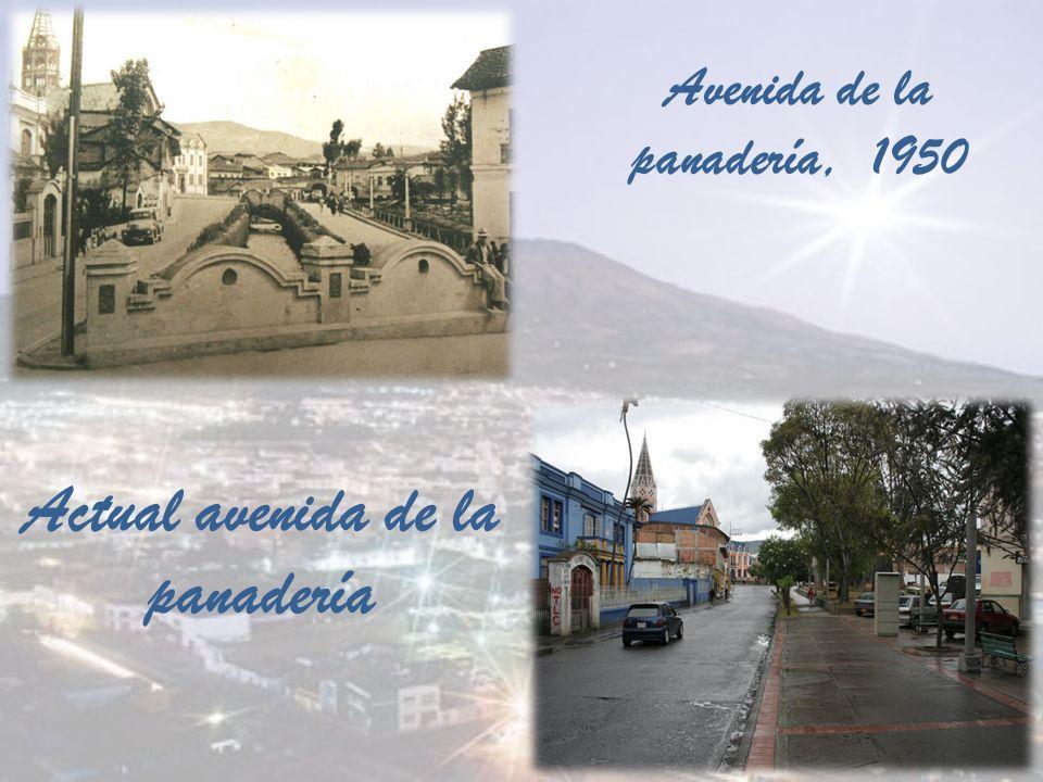 Avenida de la panadería, 1950 Actual avenida de la panadería