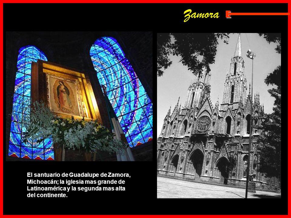 Zamora E.