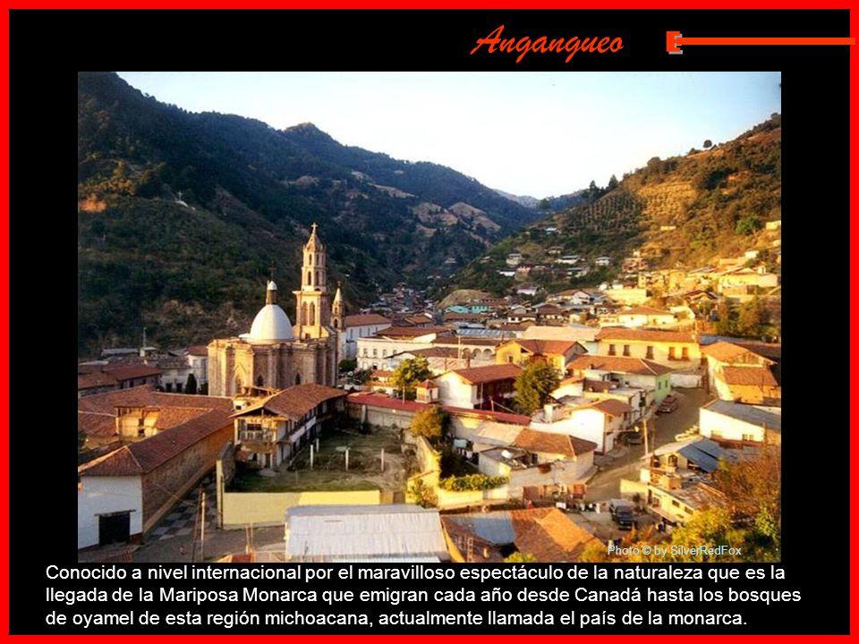 Angangueo E. Photo © by SilverRedFox.