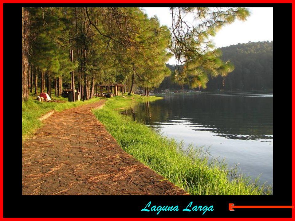 Laguna Larga E