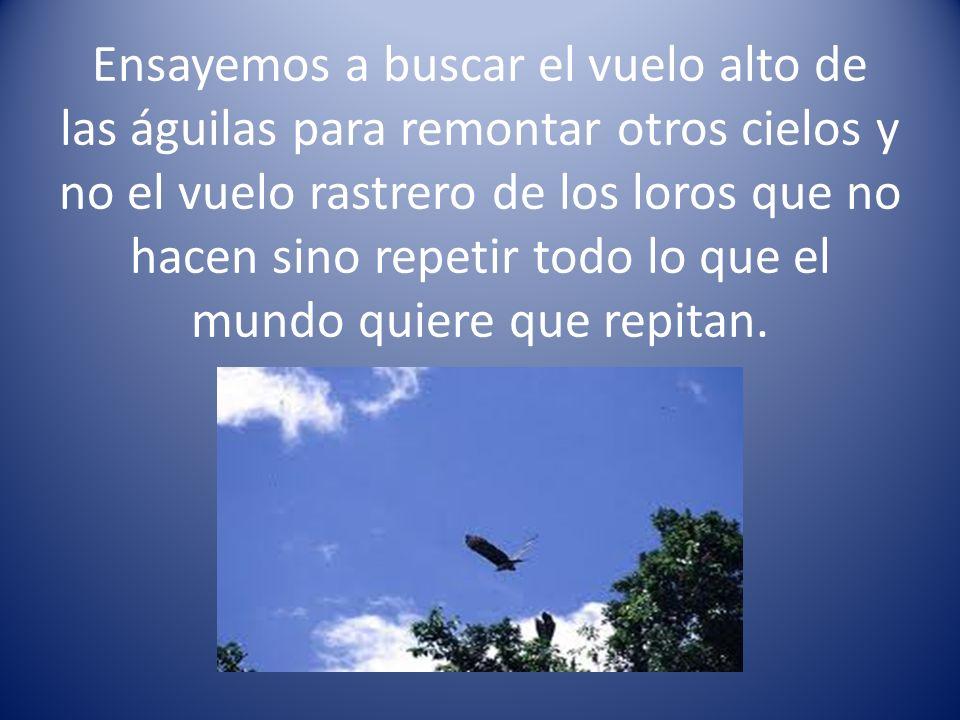 Ensayemos a buscar el vuelo alto de las águilas para remontar otros cielos y no el vuelo rastrero de los loros que no hacen sino repetir todo lo que el mundo quiere que repitan.