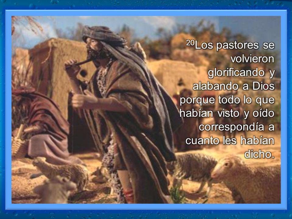 20Los pastores se volvieron glorificando y alabando a Dios porque todo lo que habían visto y oído correspondía a cuanto les habían dicho.