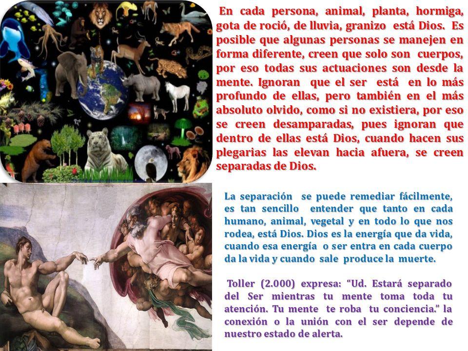 En cada persona, animal, planta, hormiga, gota de roció, de lluvia, granizo está Dios. Es posible que algunas personas se manejen en forma diferente, creen que solo son cuerpos, por eso todas sus actuaciones son desde la mente. Ignoran que el ser está en lo más profundo de ellas, pero también en el más absoluto olvido, como si no existiera, por eso se creen desamparadas, pues ignoran que dentro de ellas está Dios, cuando hacen sus plegarias las elevan hacia afuera, se creen separadas de Dios.