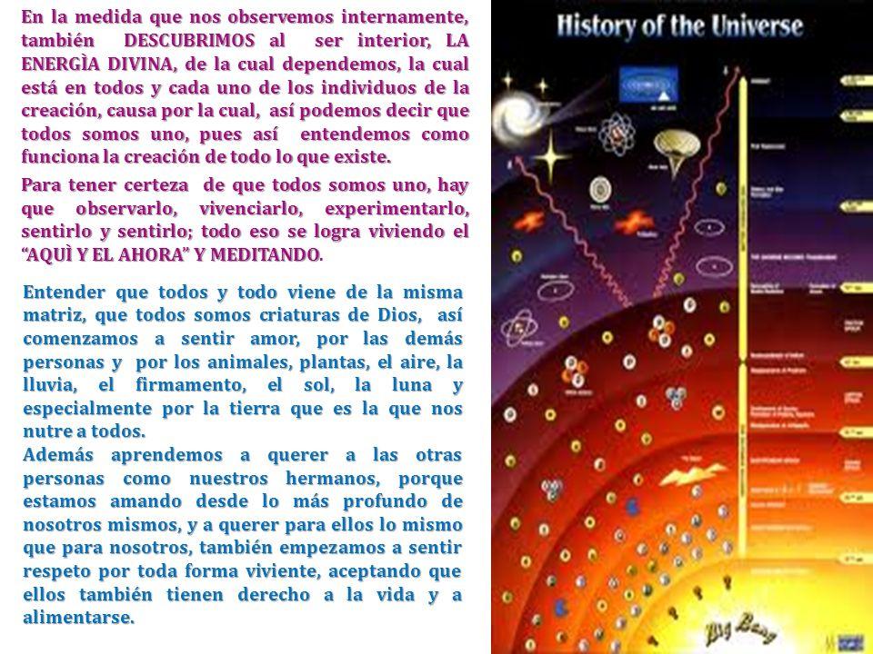 En la medida que nos observemos internamente, también DESCUBRIMOS al ser interior, LA ENERGÌA DIVINA, de la cual dependemos, la cual está en todos y cada uno de los individuos de la creación, causa por la cual, así podemos decir que todos somos uno, pues así entendemos como funciona la creación de todo lo que existe.