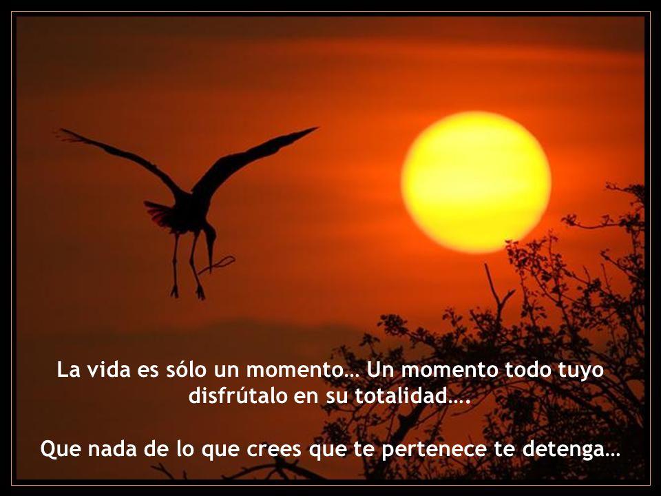 La vida es sólo un momento… Un momento todo tuyo