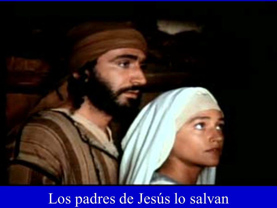 Los padres de Jesús lo salvan