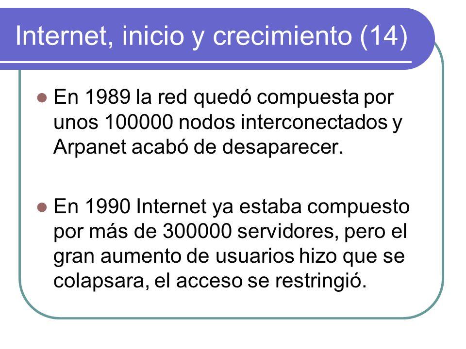 Internet, inicio y crecimiento (14)