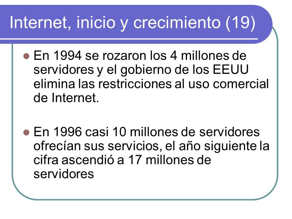 Internet, inicio y crecimiento (19)