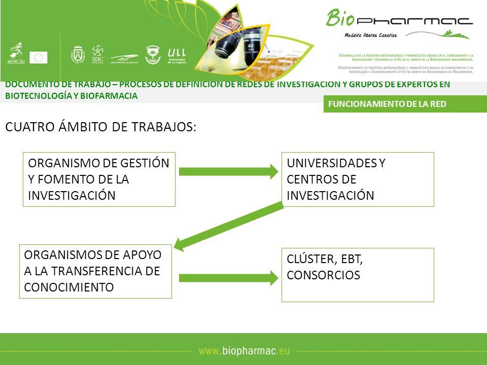 CUATRO ÁMBITO DE TRABAJOS: