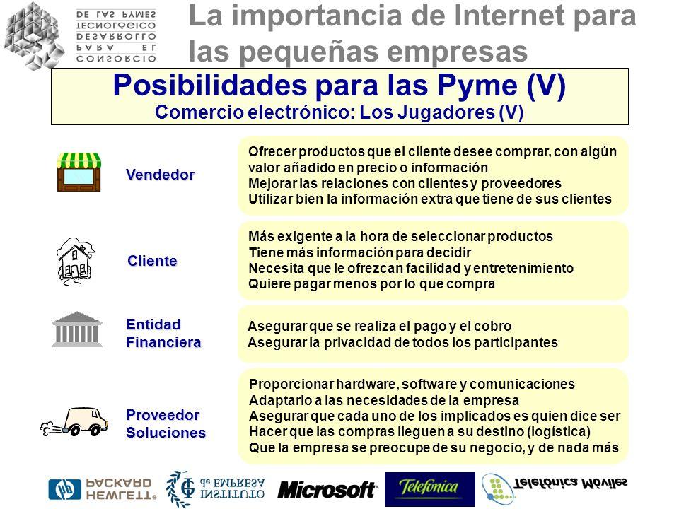 Posibilidades para las Pyme (V) Comercio electrónico: Los Jugadores (V)
