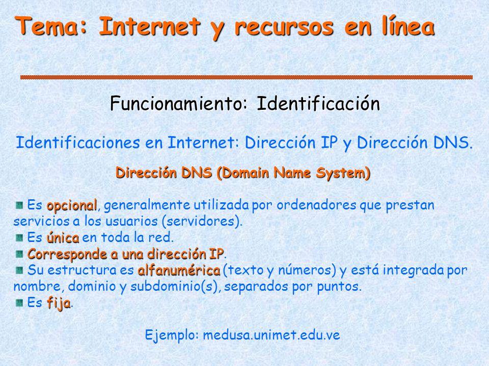 Dirección DNS (Domain Name System)