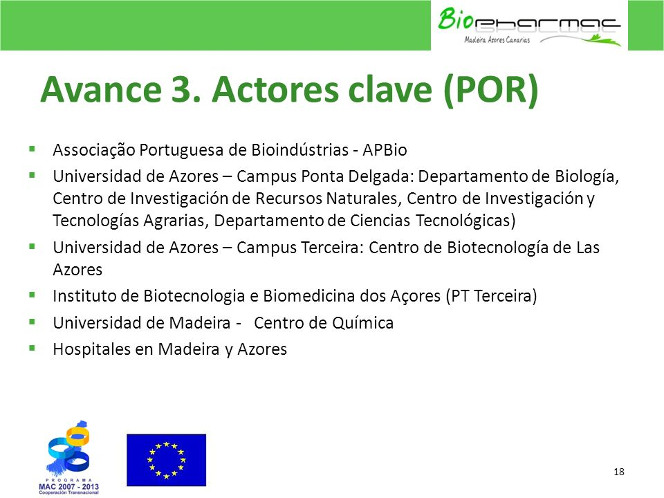 Avance 3. Actores clave (POR)