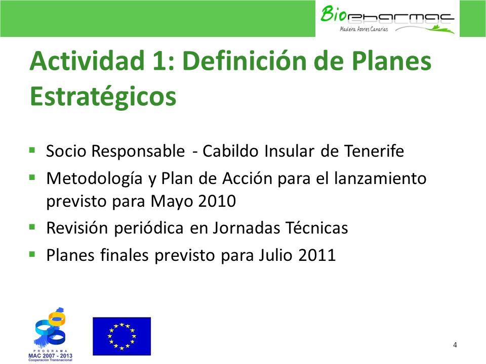 Actividad 1: Definición de Planes Estratégicos