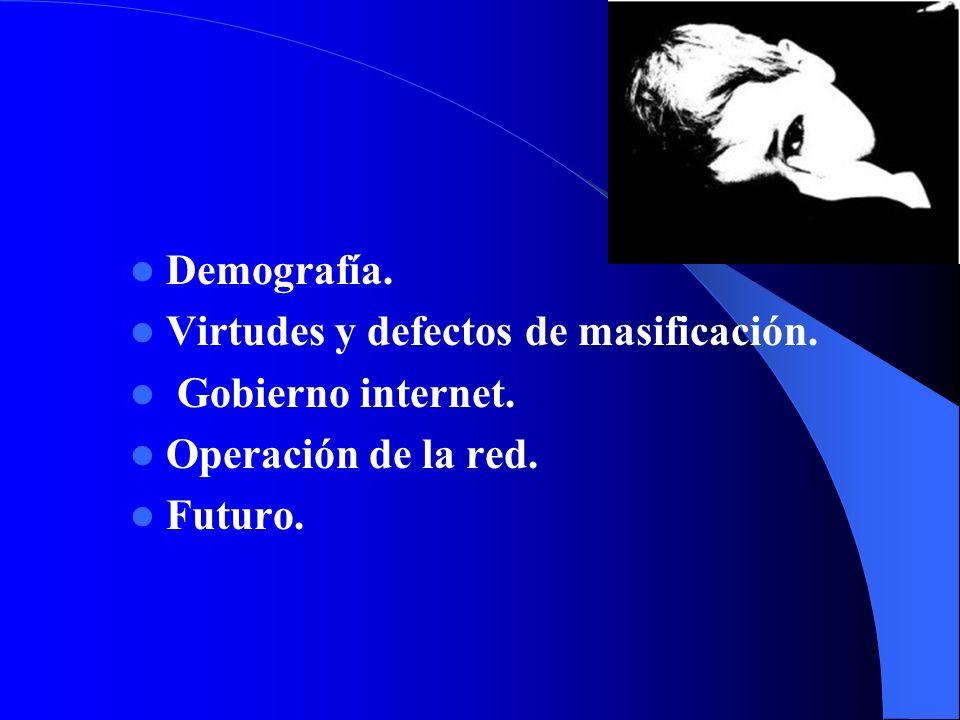 Demografía. Virtudes y defectos de masificación. Gobierno internet. Operación de la red. Futuro.