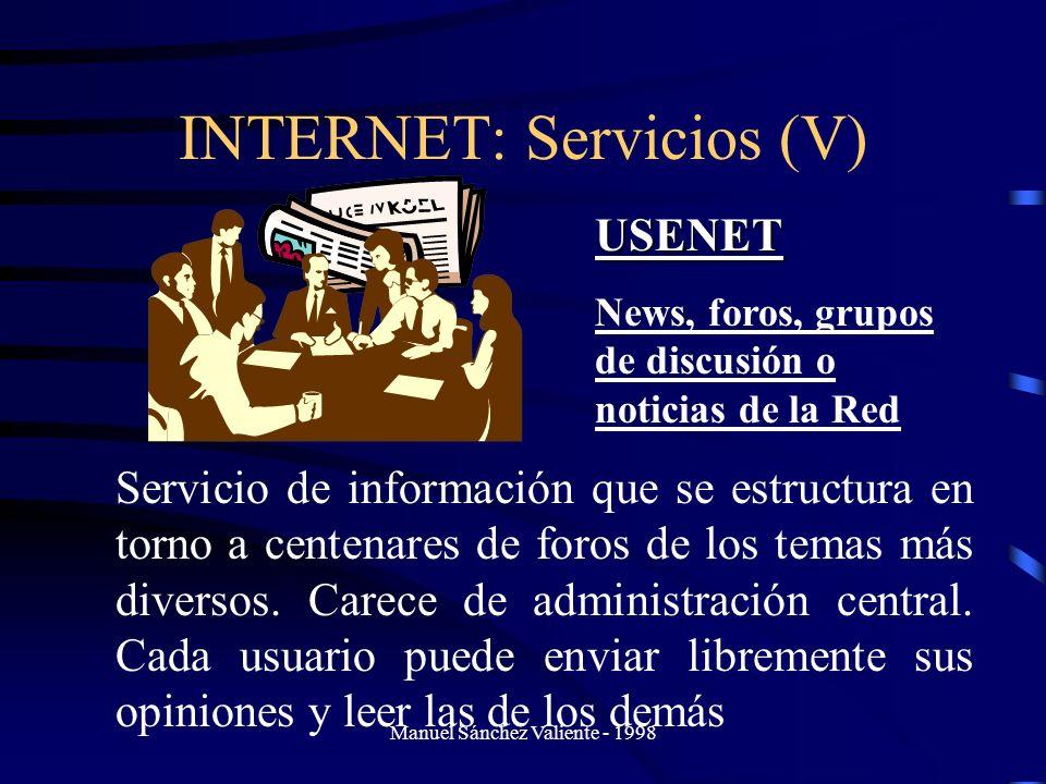 INTERNET: Servicios (V)