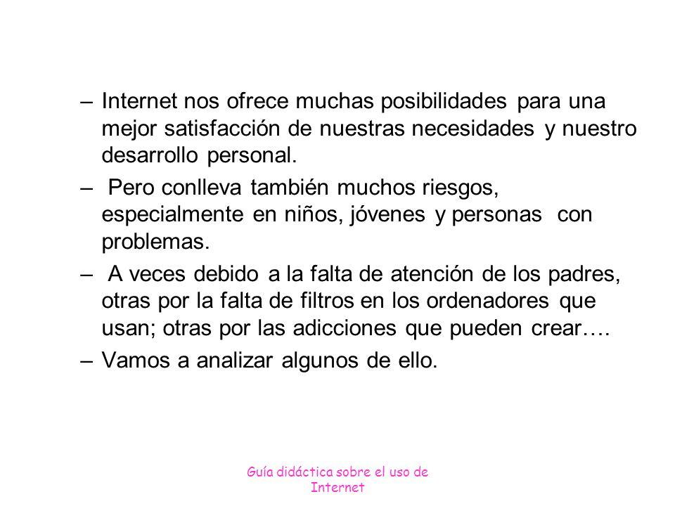Guía didáctica sobre el uso de Internet