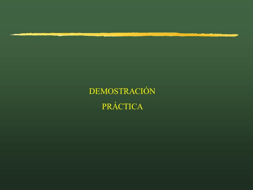DEMOSTRACIÓN PRÁCTICA