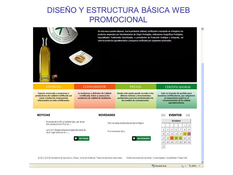DISEÑO Y ESTRUCTURA BÁSICA WEB PROMOCIONAL