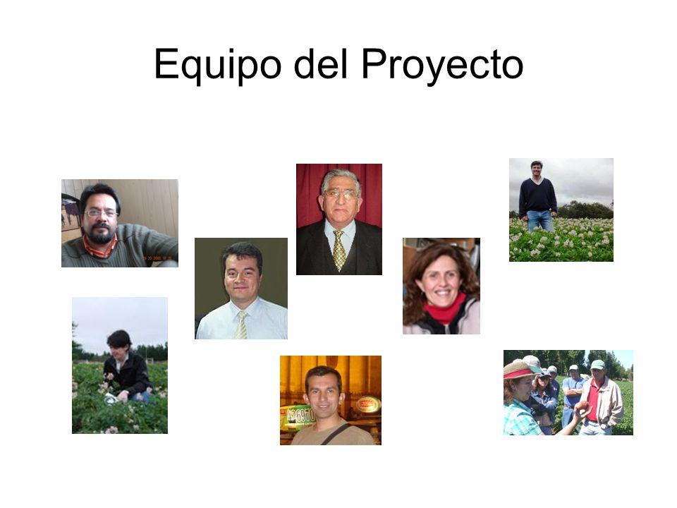 Equipo del Proyecto