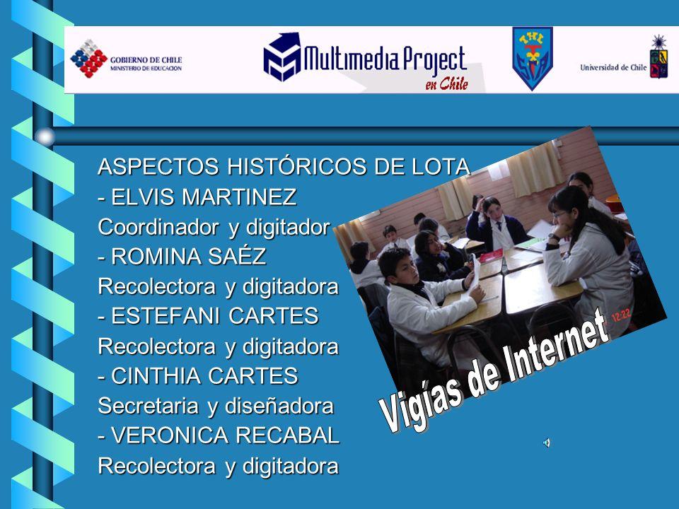 Vigías de Internet ASPECTOS HISTÓRICOS DE LOTA - ELVIS MARTINEZ