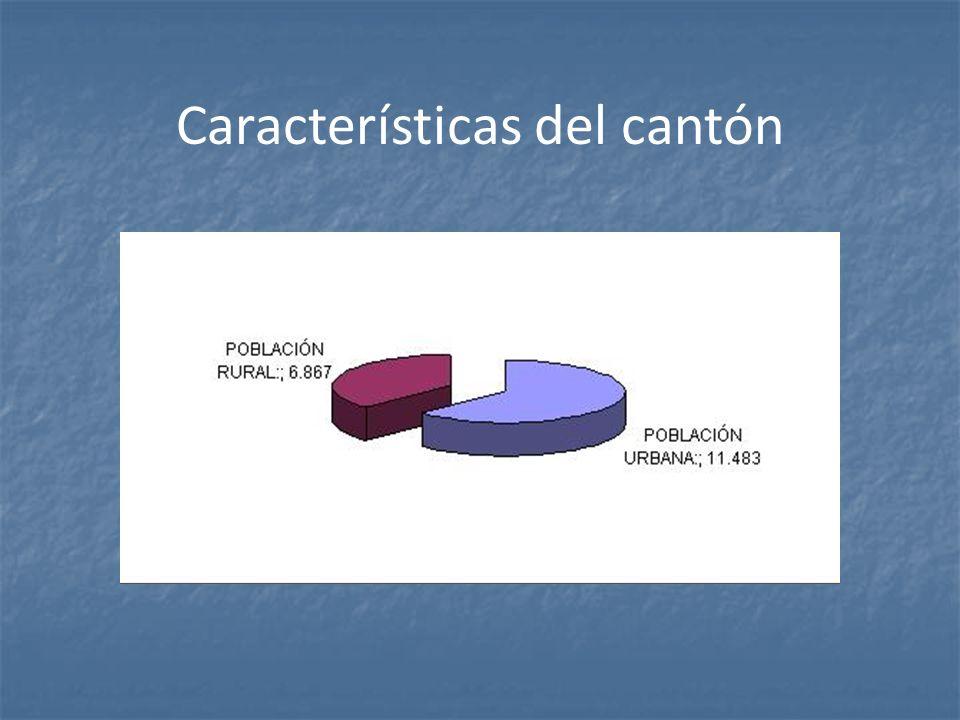 Características del cantón