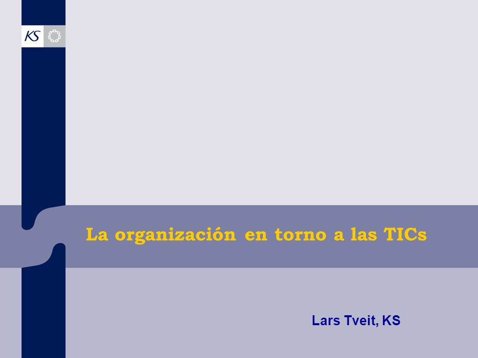 La organización en torno a las TICs