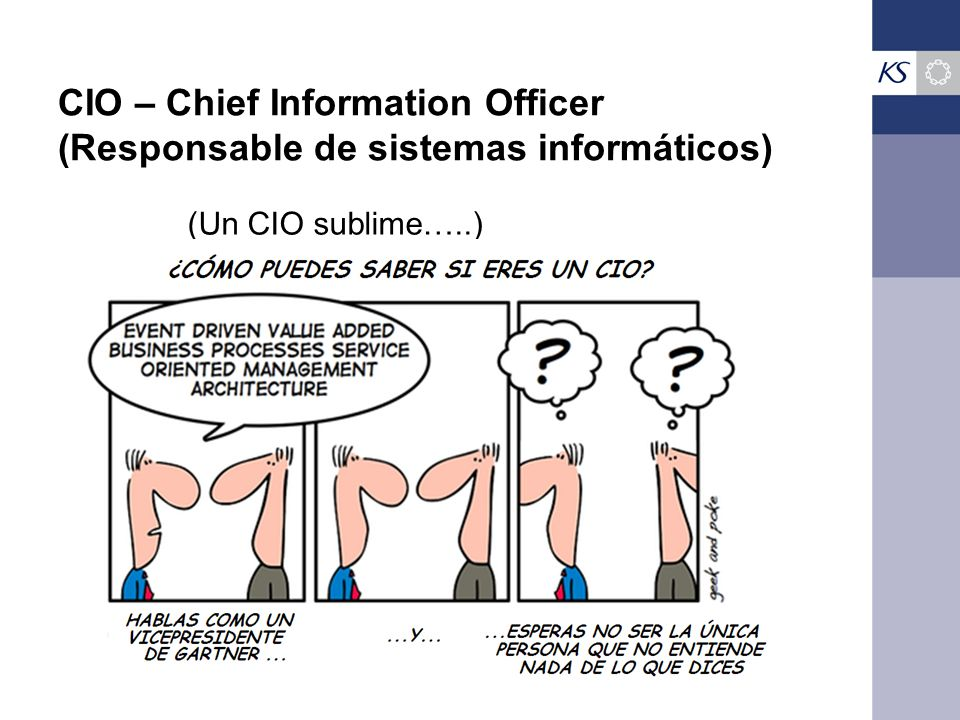 CIO – Chief Information Officer (Responsable de sistemas informáticos)