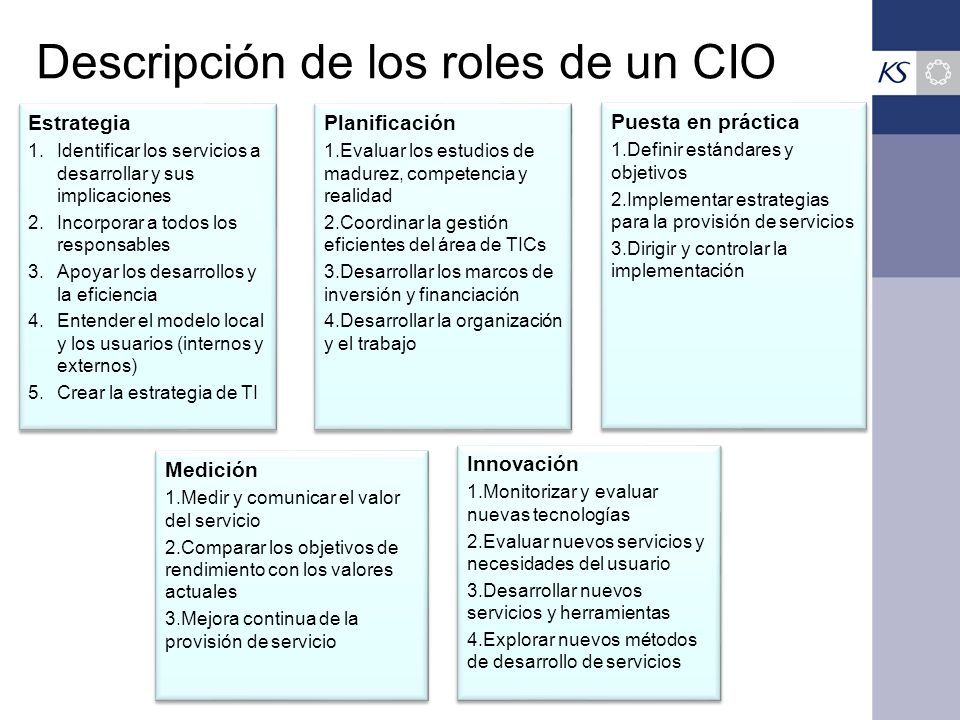Descripción de los roles de un CIO