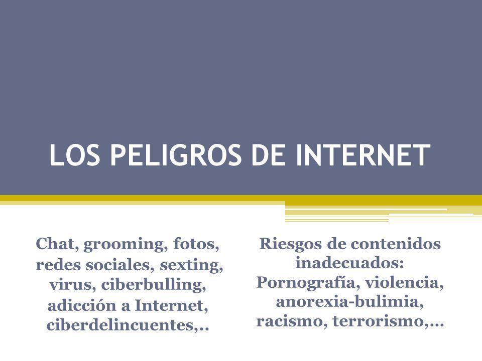 LOS PELIGROS DE INTERNET