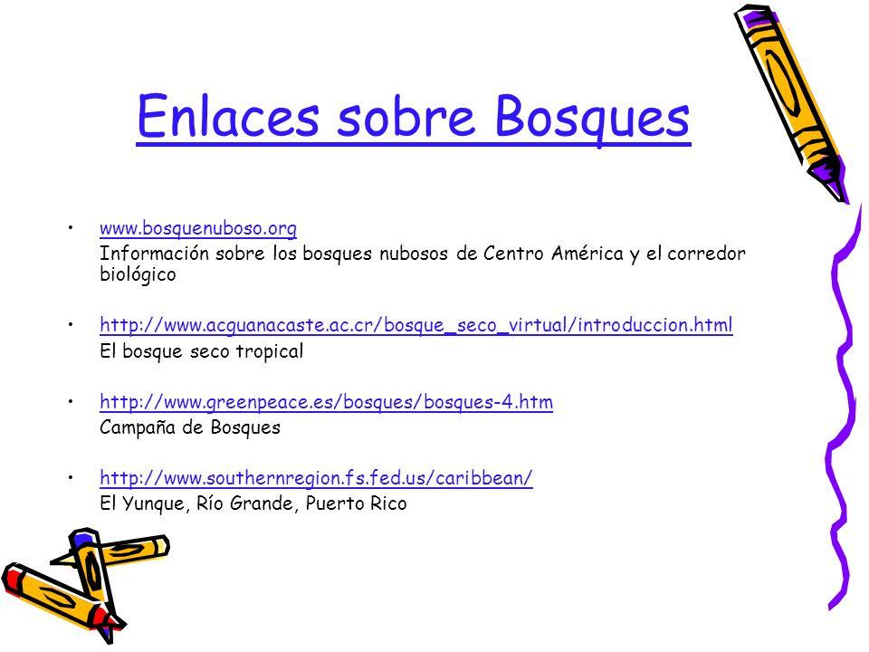 Enlaces sobre Bosques www.bosquenuboso.org