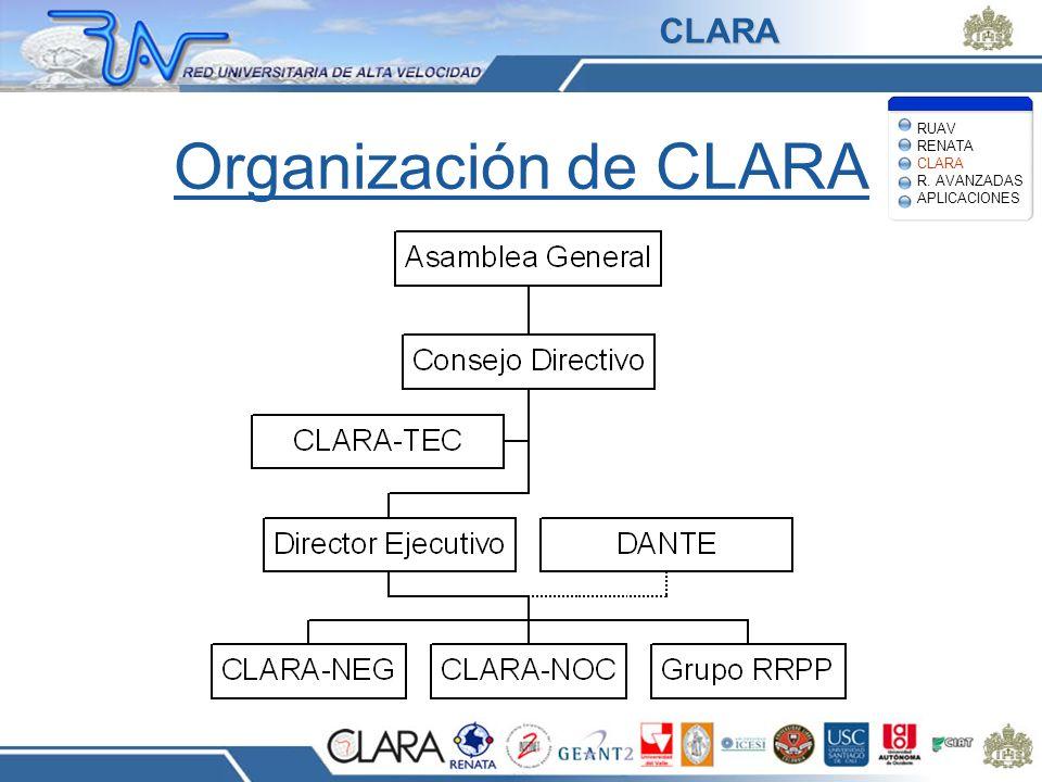Organización de CLARA CLARA