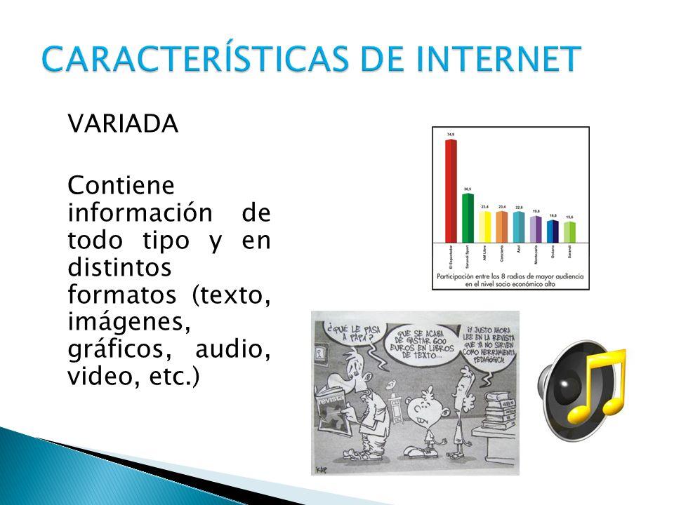 CARACTERÍSTICAS DE INTERNET