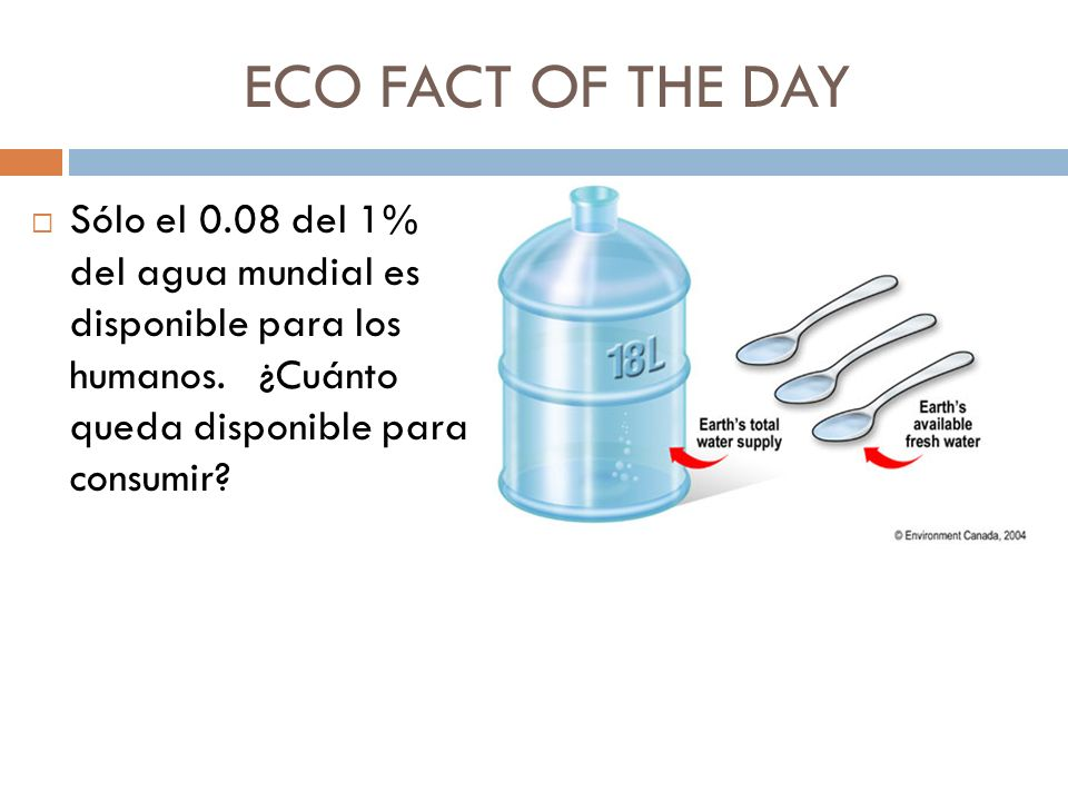 ECO FACT OF THE DAY Sólo el 0.08 del 1% del agua mundial es disponible para los humanos.