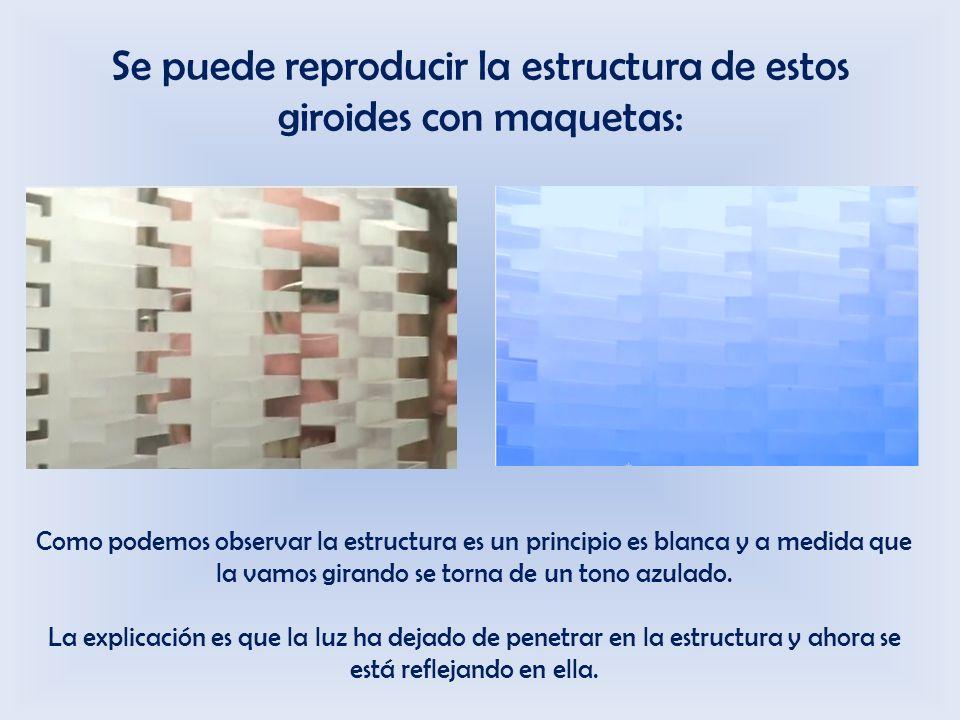 Se puede reproducir la estructura de estos giroides con maquetas: