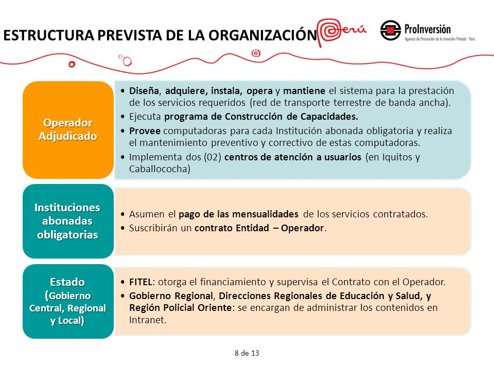 Estructura prevista de la Organización