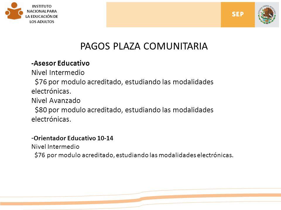 INSTITUTO NACIONAL PARA LA EDUCACIÓN DE LOS ADULTOS