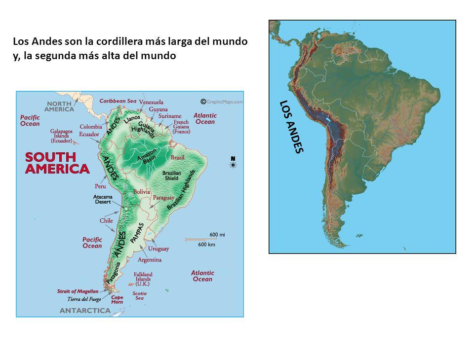 Los Andes son la cordillera más larga del mundo y, la segunda más alta del mundo