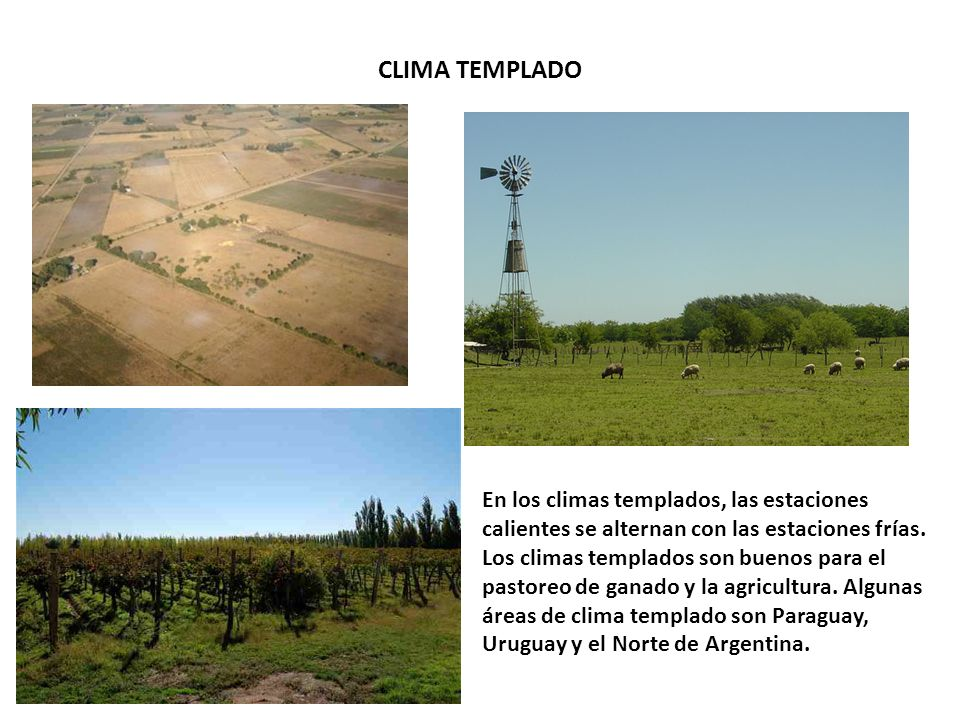 CLIMA TEMPLADO