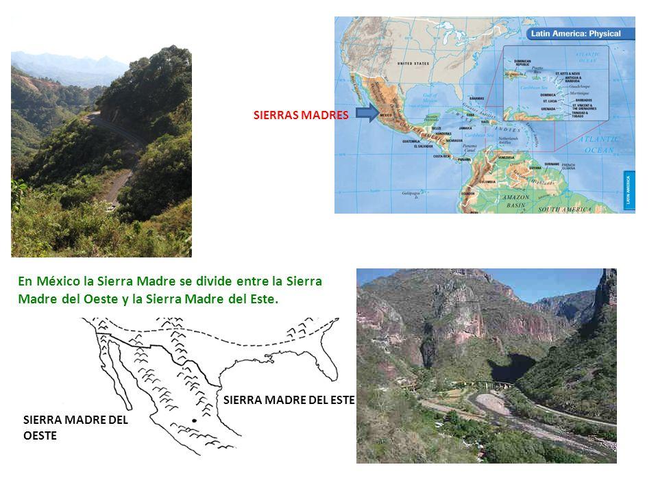 SIERRAS MADRES En México la Sierra Madre se divide entre la Sierra Madre del Oeste y la Sierra Madre del Este.