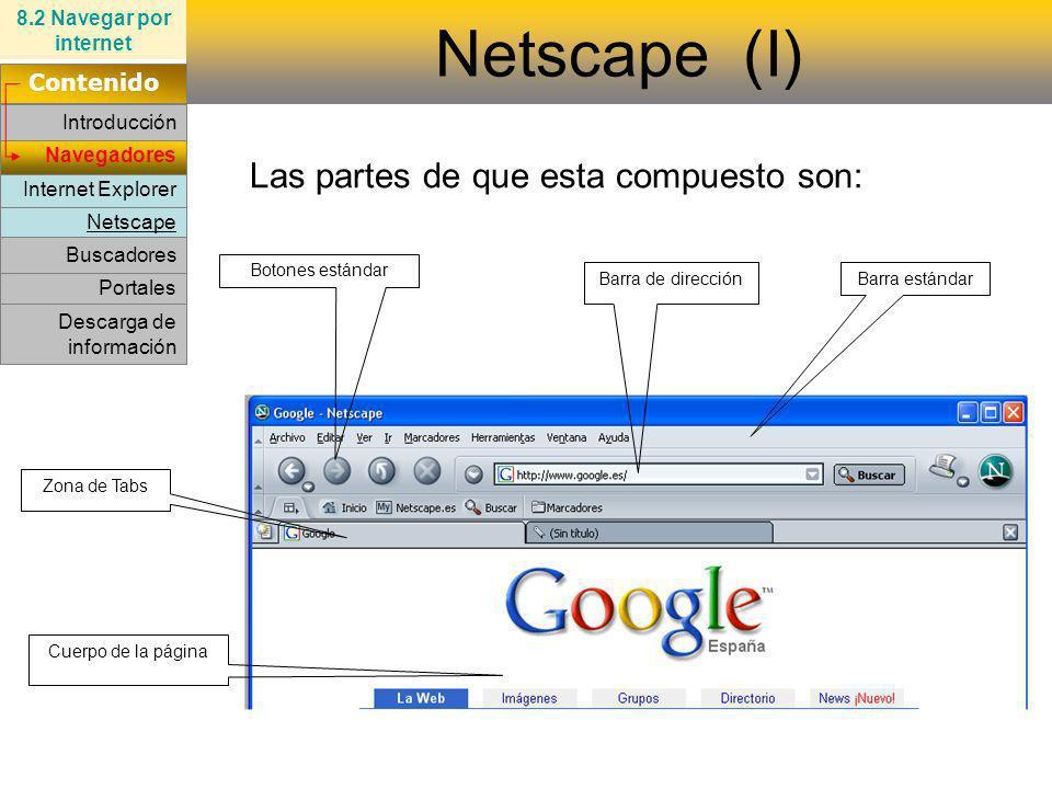 Netscape (I) Las partes de que esta compuesto son: Contenido