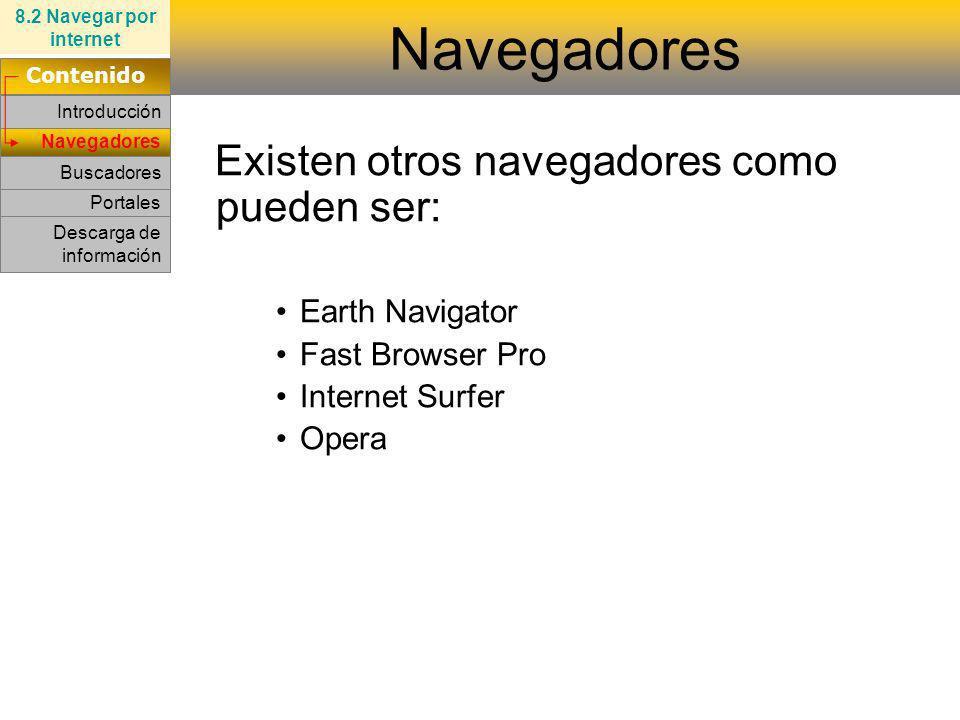 Navegadores Existen otros navegadores como pueden ser: Earth Navigator