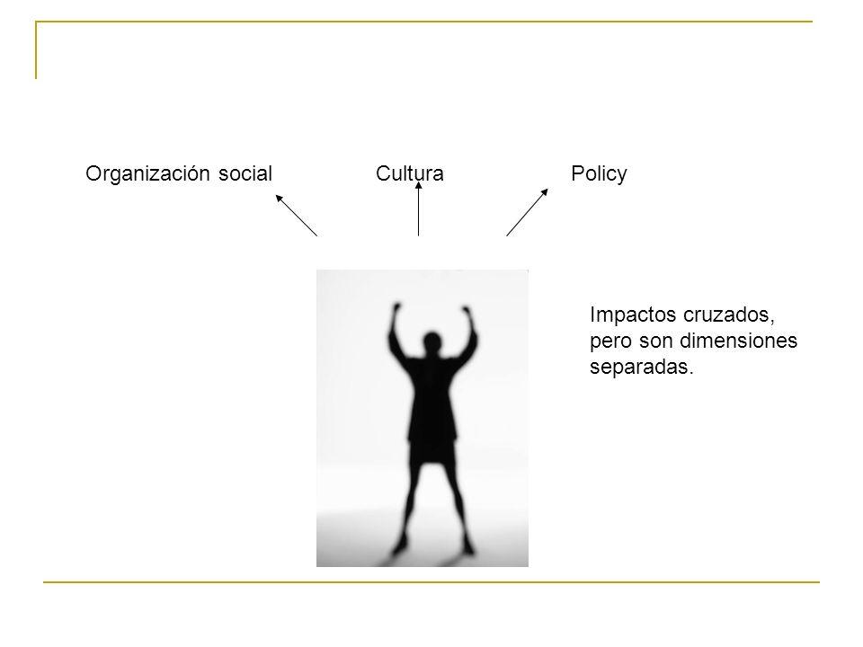 Organización social Cultura Policy