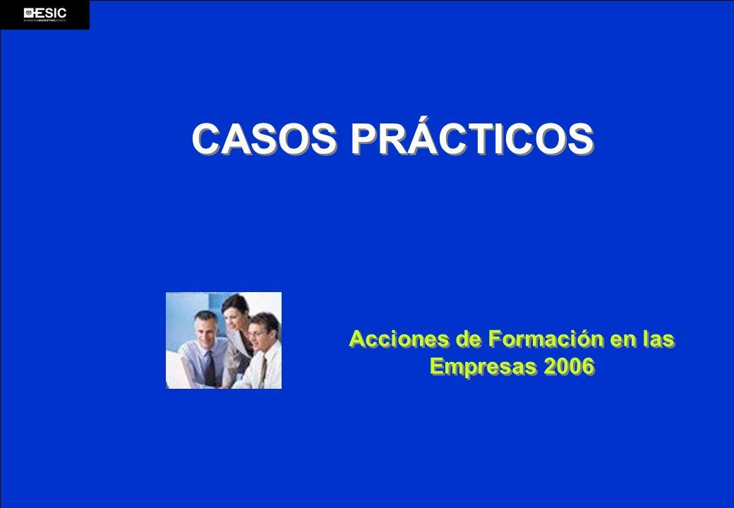Acciones de Formación en las Empresas 2006