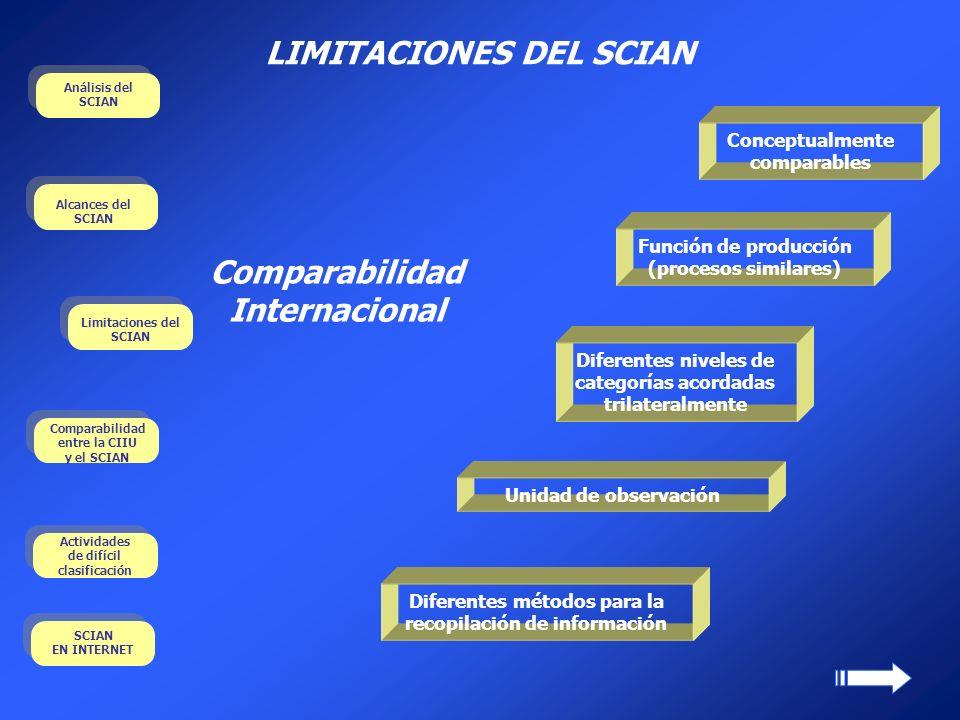 LIMITACIONES DEL SCIAN Comparabilidad Internacional