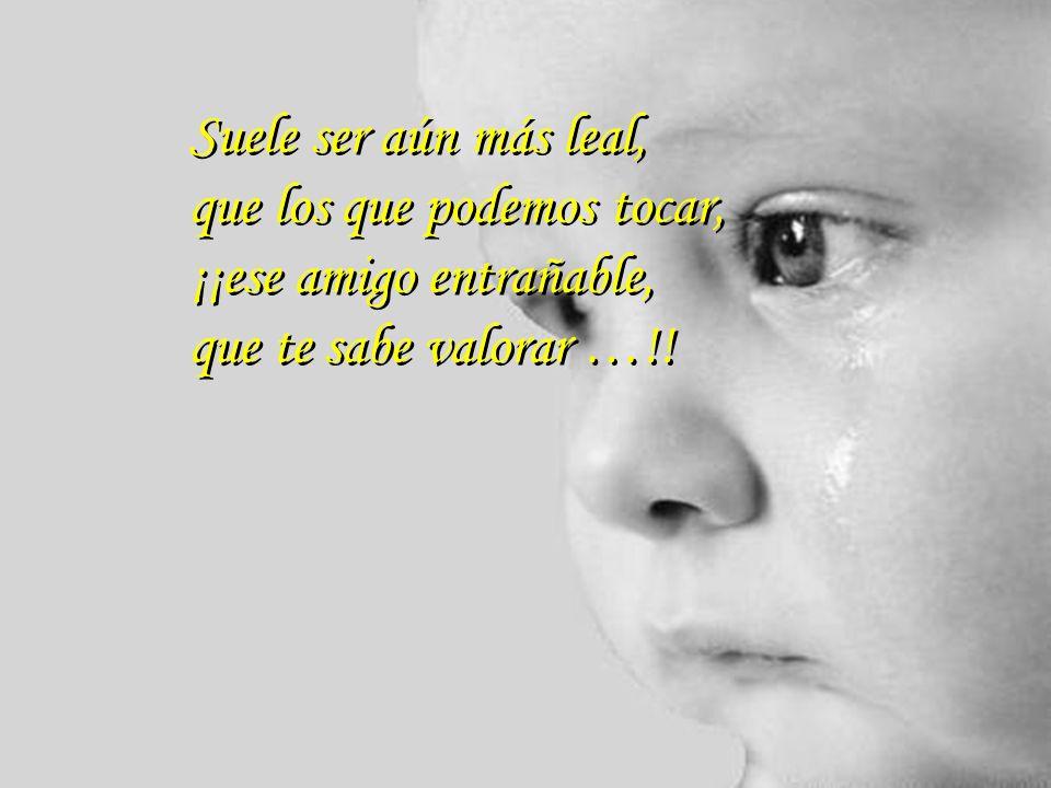 Suele ser aún más leal, que los que podemos tocar, ¡¡ese amigo entrañable, que te sabe valorar …!!